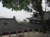 Temple Roofscape