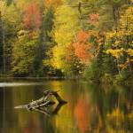 """""""Autumn in Vermont"""" by charlottelembo"""