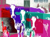 Three_Cows_In_New_York