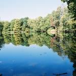 """""""Garden Lake"""" by lafmil"""