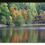 """Reflection of Fall Colors in the Water"" by Nyles"