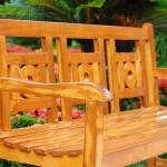 """""""Nicely built bench (Grounds of the Marriott)"""" by jstonernusa"""