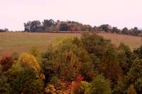 Landscape in the fall