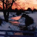"""""""Winter at Barboursville"""" by BearDancerStudios"""