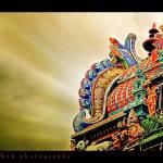 """Pilliyarpatti Gopuram"" by ayashok"