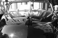 vintage car study black & white
