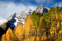The Maroon Bells With Aspens