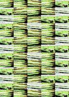 Bamboo Vertical Variation 2