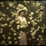 """Woman standing in flowering bush"" by vintagepostcards"