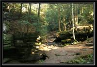 Deep in the Forrest Hocking Hills Ohio