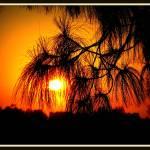 """""""Sunset, Orange CA"""" by edensdad"""