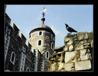 White Tower and the Raven