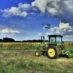 """""""Harvester Respite"""" by cmaccubbin"""