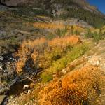 """Eastern Sierras in Fall 2008 -Tioga Pass"" by Teagarden"