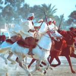 """""""Fiesta ... Laghouat (Algeria )"""" by opusbey"""