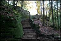 Hocking Hills  Ohio stairway in the woods