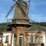 """""""Windmill Gardens"""" by MTeeter"""