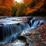 """""""Fall Colors at Cazenovia"""" by crs1042"""