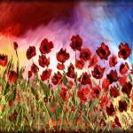 """PASSION POPPIES"" by peggygarr"