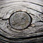 """""""Wood 2"""" by rbbm"""