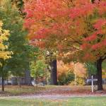 """Pittsford Cemetary in Autumn 006"" by PittsfordPIcs"