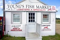 Youngs Fish Market (Orleans, Cape Cod)