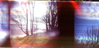 this holga film scanned weird
