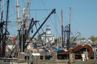 Lobster boats of the cape