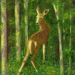 """Fawn"" by FTMcKinstry"