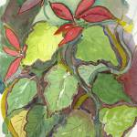 """""""poinsettia sketch #6"""" by malevison"""