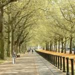 """Springtime in London!"" by memphisphotoman"