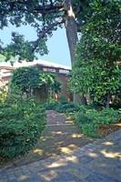 Dumbarton Oaks, Washington, DC 12