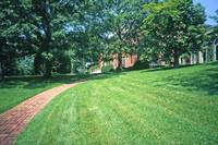 Dumbarton Oaks, Washington, DC 8