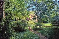 Dumbarton Oaks, Washington, DC 14