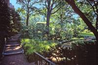 Dumbarton Oaks, Washington, DC 19