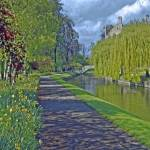 """Backs in Spring, Cambridge"" by PriscillaTurner"
