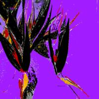 purple abstract art square