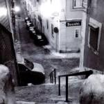 """""""Sooshi en Lisboa / Sooshi in Lisbon"""" by carlosrevilla"""