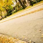 """""""Autumn around here"""" by ccap77"""