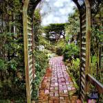 """Into the Garden"" by BarbaraBrownPhotography"