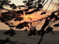 Carmel sunset 10