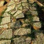 """Pathway To No Where !!"" by kbprabu"