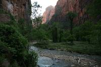 Zion National Park 3