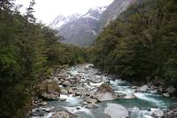 South Island River 1