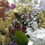 """""""Flowers"""" by mygahp"""