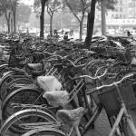 """China bikes.jpg"" by BehindTheLens"