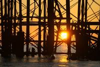 Brighton's West Pier at sunset with seagulls in si