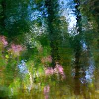 Giverny spirit I