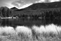 Sprague Lake in BW
