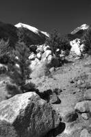 Alluvial Fan in BW I